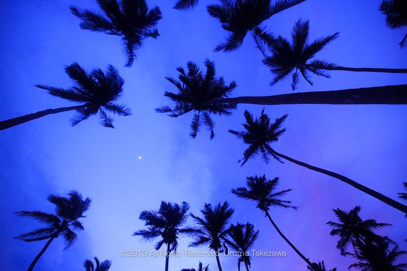 アジアの旅18日目 スリランカ・ウナワトゥナ – 写真家 竹沢うるま