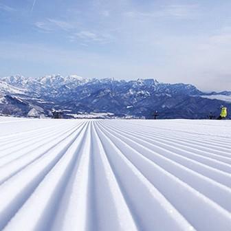 早起きは三文の徳!朝一番のスノーボードで3つ得する