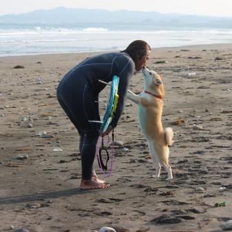 柴犬ラニと海のストーリー#02|待っていてくれて、ありがとね!