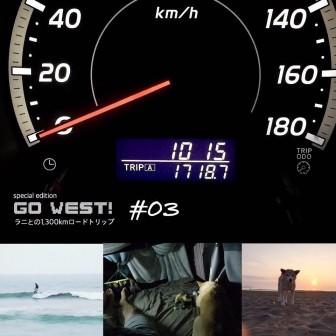 柴犬ラニとの1,300kmロードトリップ |1,700km突破!? 編