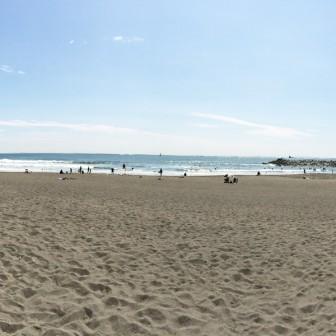 痩せ細る浜|湘南、海岸侵食の現状