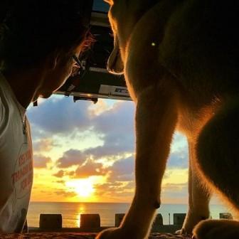 【最終章】車泊の旅へ|そしてまた、陽は昇る|柴犬ラニとの4,342kmロードトリップ2016